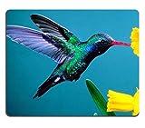 """Colibrì Beautiful Colors Plant Volo di uccelli Nettare giallo petali in Mouse Pad personalizzato, per sostegno Ready 97/8inch (250mm) X 7/8(200mm) X 1/16""""(2mm) panno ecologico di alta qualità con gomma neoprene Liil Mouse Pad Mouse Desktop Laptop Mousepad Tappetino per il mouse comodo cute mouse da gioco _ Pad"""