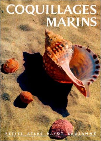 Coquillages marins, numéro 33 par Arrecgros
