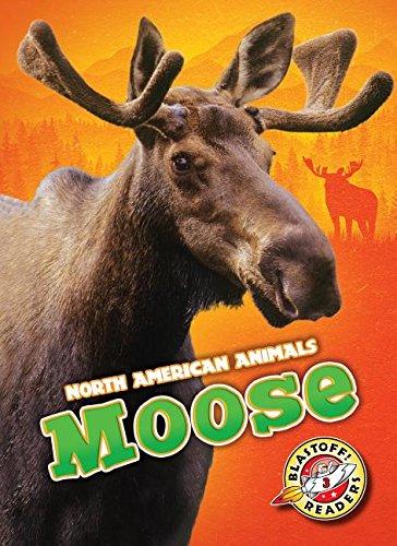 Moose (Blastoff Readers. Level 3)