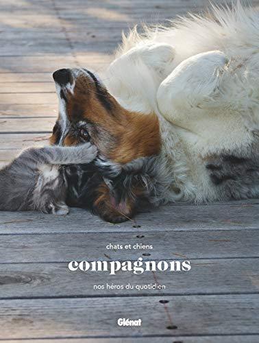 Compagnons: Chats et chiens, nos héros du quotidien