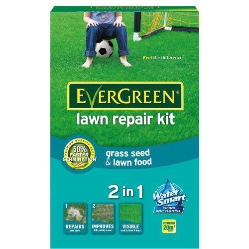 Evergreen Kit de réparation de gazon 1 kg