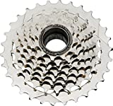 DNP Epoch Freewheel 8spd 11-32 Nickel Plated by DNP