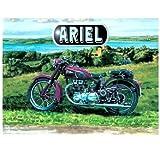 Ariel Moteur moto Classique moteur Cycle. Peint en Violet. Sur la photo dans le campagne par a lac, paysage peinture Ancien 20th Siècle, culbuteur moto Métal/Panneau Mural Métalique - 30 x 40 cm