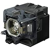 BenQ 5J.jed05.001 Projector Lamp – Projector Lamps (BenQ, – th683 – W1090)