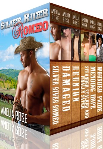 License To Love and Rancher Romance 6 Book Box Set (Contemporary Cowboy Romance - 6 pack) (English Edition)