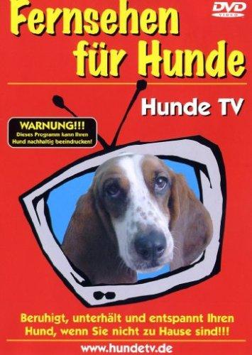 Fernsehen für Hunde - Hunde TV