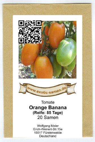 Orangefarbene Tomate - gut für Kübelbepflanzung auf Balkon/Terrasse - Orange banana - 20 Samen