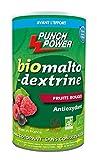 Punch Power Biomaltodextrine Fruits Rouges Pot de 500 g