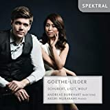 Goethe-Lieder [Import allemand]