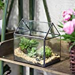 NCYP House Shape Close Glass Geometric Terrarium Wedding Centerpiece Tabletop Succulent Air Plants Planter Window Sill… 11