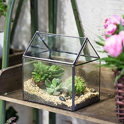 NCYP House Shape Close Glass Geometric Terrarium Wedding Centerpiece Tabletop Succulent Air Plants Planter Window Sill… 4