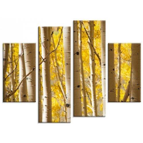 arboles-de-abedul-bosque-multi-diseno-de-panel-lienzo-4-paneles-tamano-43-x-30