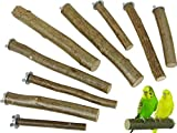 9 Sitzstangen für Vögel aus Naturholz | Maxi-Set (3X 14 cm, 3X 20 cm, 3X 26 cm lang | Für Wellensittiche, Finken, Nymphensittiche, Papageien und Co. | Sitzstangen Set für Vögel