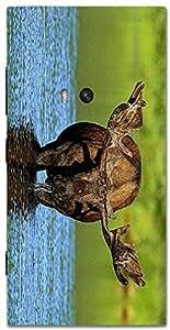Timpax protective Armor Hard Bumper Back Case Cover. Multicolor printed on 3 Dimensional case with latest & finest graphic design art. Compatible with Nokia Lumia 920 Design No : TDZ-27439