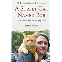 A Street Cat Named Bob: And How He Saved My Life (Wheeler Large Print Book Series) by James Bowen (2013-09-04)