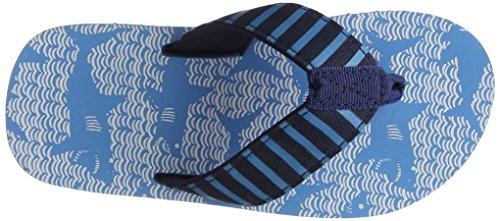 Hatley Jungen Flip Flop Zehentrenner, Blue (Shark Alley), 29 EU