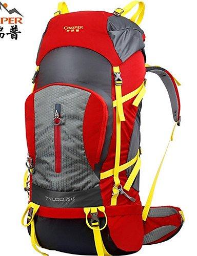 ZQ 75L L Tourenrucksäcke/Rucksack / Wandern Tagesrucksäcke / Rucksack Camping & Wandern / Klettern / Reisen DraußenWasserdicht / Red