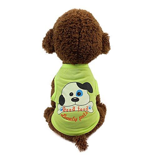 Haustier T-Shirt,Hundekleidung Hemd Weste T-Shirt Haustier-Kleidung,T-Shirt Hunde Pullover Bekleidung Dog Katze Haustier,für Kleine Hunde,Welpen,Schnauzer,Teddy,Pudel,Chihuahua (Grün, M) - Die Französischen Grünen T-shirt