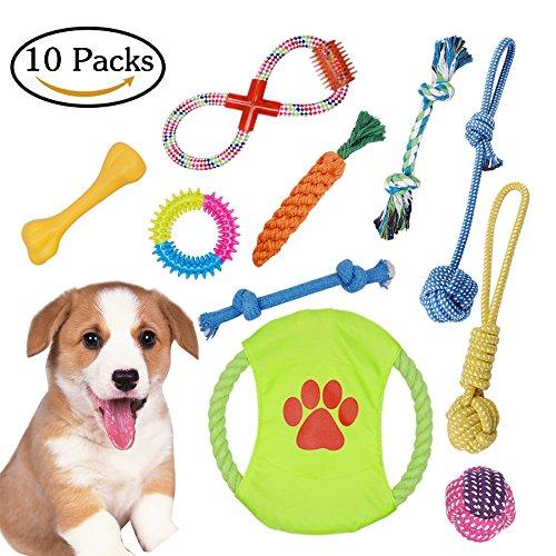 Hundespielzeug Seil Hundetraining Spielzeug , Ball, Baumwollknoten, Frisbee, Kauspielzeug Spielzeug Set für kleine Hunde und Welpen(10 Pcs) (Bälle Frisbee Hund)