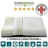 EVERGREENWEB MATERASSI & BEDS Cuscino 100% Lattice Doppia Onda per cervicale Tessuto aloe