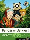 Pandas en danger !