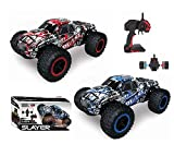 Diawell RC ferngesteuertes Auto Monstertruck Truck 2,4 GHz High Speed ca. 20km/h