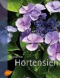 Hortensien - Harry van Trier