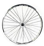WILKINSON - Cerchione a doppia camera per ruota posteriore di bicicletta ibrida, 700 C, colore: argento