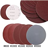 Rishil World 25pcs 5 Inch Abrasive Sanding Discs Sanding Paper 800/1000/1500/2000/3000 Grit Sand Paper