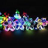 Solar lichterkette aussen, Mr.Twinklelight 6.5 Meter 50er LED Blumen Solar Lichterkette für Garten, Bäume, Terrasse, Weihnachten, Hochzeiten, Partys, Innen, IP65 wasserdicht (Mehrfarbig)