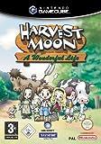Harvest Moon - A Wonderful Life -