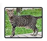 Maßgeschneiderte Cat Gaming Maus Pad Ausladung Rutschfestem Gummi langlebigem Computer-Schreibtisch Stationery Zubehör Mauspad–24,9x 30cm, Egyptian Mau Cat5, 9.8 X 11.8 inch