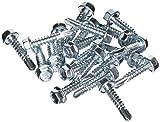 Rawlplug R-SK-OC-55025 5.5 x 25 mm Self Drilling Screws (Bag of 100) (100 pieces)