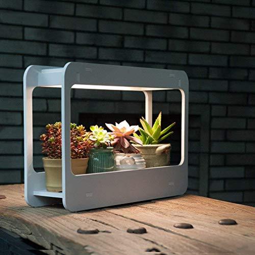 J&C Pflanzenlampe LED Grow light Tageslicht 4000K Vollspektrum innen Mini Garten 850LM Auto-Schalter Pflanzenlicht Wachstumslicht mit Halter AC220-240V weiss für Gemüse Blumen