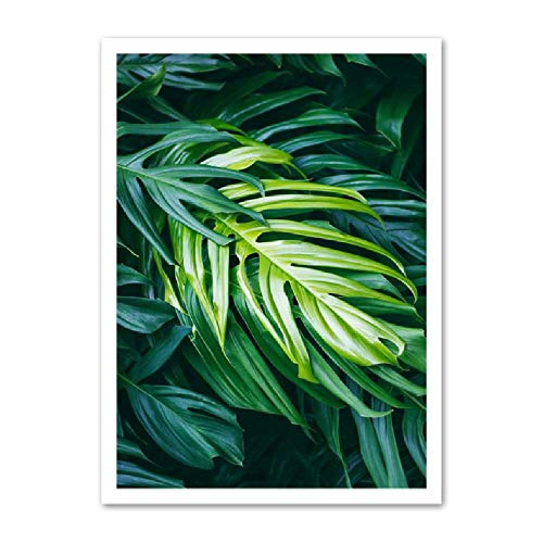 Natürliche Grüne Monstera Blätter Wandkunst Leinwand Malerei Poster Und Drucke Wandbilder Wohnzimmer Kunst Dekor 80x100 cm -