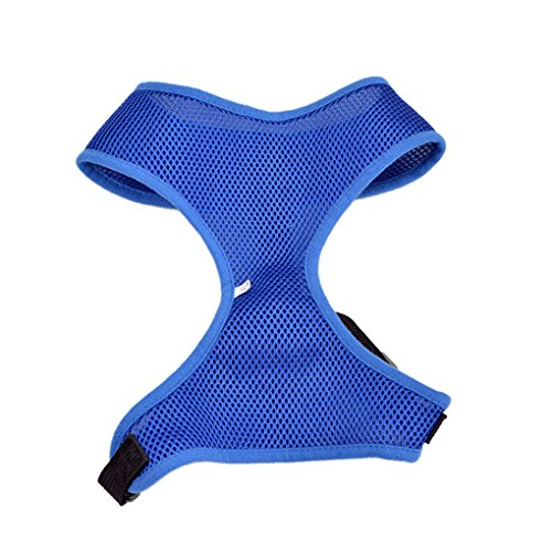 QHGstore Pet Dog Mesh cinghia del cablaggio conduce cucciolo Comfort maglia del collare Belt Blu S