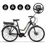 RICH BIT SBX Bicicleta Eléctrica City Bike SHIMANO ASL8S Velocidad BaFang 48V * 250W Motor...