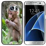 STPlus Animal bébé singe Coque Rigide Étui Cache pour Samsung Galaxy S7 Edge