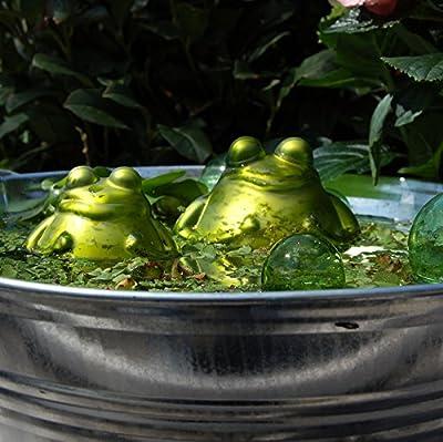 Schwimmfrosch mit Kind von Asia - Du und dein Garten