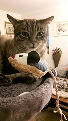 LunaChild Maus Spielzeug WUNSCHNAME Katzenspielzeug Baldrian Name Rassel blau Katze -