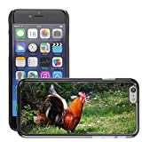Hülle Case Schutzhülle Cover Premium Case // M00125540 Tier Vogel Hell Huhn Hahn // Apple iPhone 6 4.7