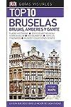 https://libros.plus/guia-visual-top-10-bruselas-la-guia-que-descubre-lo-mejor-de-cada-ciudad/
