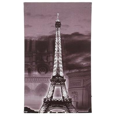 LED Picture Bild Leinwand Eiffelturm Wandbild Druck neu Leuchtbild Esto Paris 900441 von Esto auf Lampenhans.de