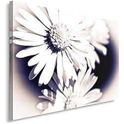 Feeby Frames, Cuadro en lienzo, Cuadro impresión, Cuadro decoración, Canvas de una pieza, 70x100 cm, FLORES MARGARITAS, , FLOR GRANDE,, BLANCO, FLOR SILVESTRE
