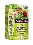 Naturen Bio Vitalkur Pflanzenstärkungsmittel zum gießen und sprühen für pilzanfällige Pflanzen mit Kräutermischung, 10 Pads