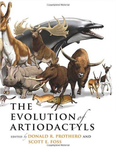 The Evolution of Artiodactyls