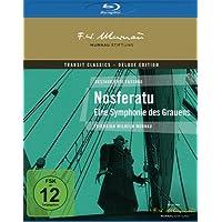Nosferatu - Eine Symphonie des Grauens - inkl. 20-seitigem Booklet