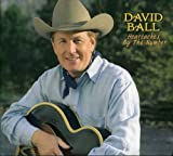 Songtexte von David Ball - Heartaches by the Number