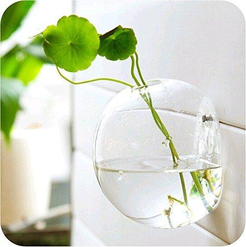 Mkouo Wandbehang Pflanzgefäße rund Glas Pflanzschalen Aufhängen Air Pflanzschalen Flower Vase Air Plant Terrarien Wand aufhängen Pflanztopf Blumentöpfe Pflanze Terrarien