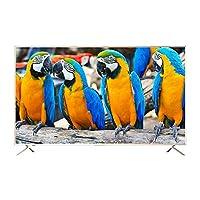 Ilike 50 Inch 4K QLEDHD Ultra Slim Smart TV- Gold, IITQ5050